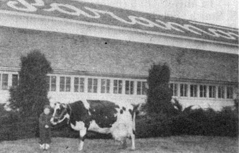 Paramount Dairy
