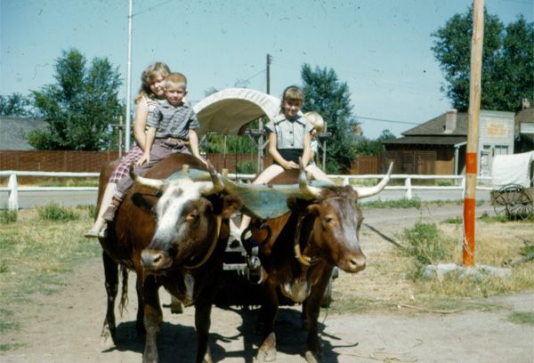 Ox-Drawn Wagon ride at Pioneer Village in Salt Lake City, 1957. Photo: Janice Staker Brown