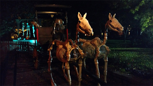Horses added to the Scare Zone in October. Photo: B. Miskin